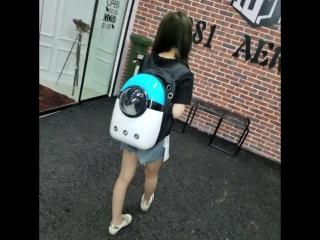 Видеообзор рюкзак переноска для животных 940 + доставка