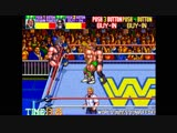 WWF WrestleFest Tag Team championship
