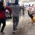 Everyone just dance