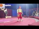 Хотим обрадовать жителей Каспийска, а так же наших гостей, с 13 по 22 июля к нам приезжает цирк Шапито, будем рады Вас всех виде