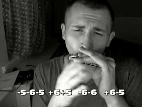 Кукушка (Кино) табы для губной гармошки