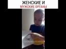 Видео Еблана