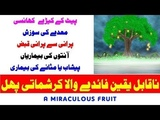 A Miraculous Fruit With Magical Benefits Every One Should Know This Remedy