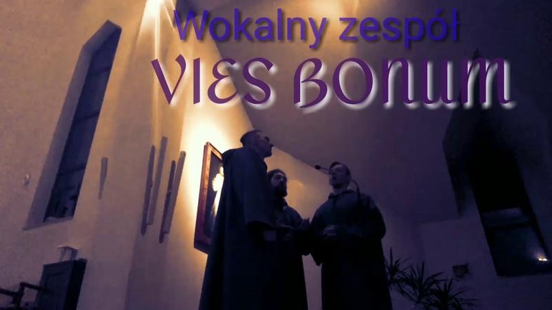 Witaj Pokarmie P Bębenek Wokalny zespół Vies Bonum