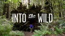Into The Wild [Tempest Freerunning] Redwood National Forest