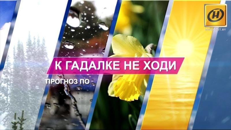 К гадалке не ходи прогноз погоды от Дм Рябова