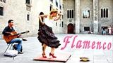 Spanish Flamenco Dance is a Beautiful Art.