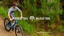 2018 Marin Bobcat Trail