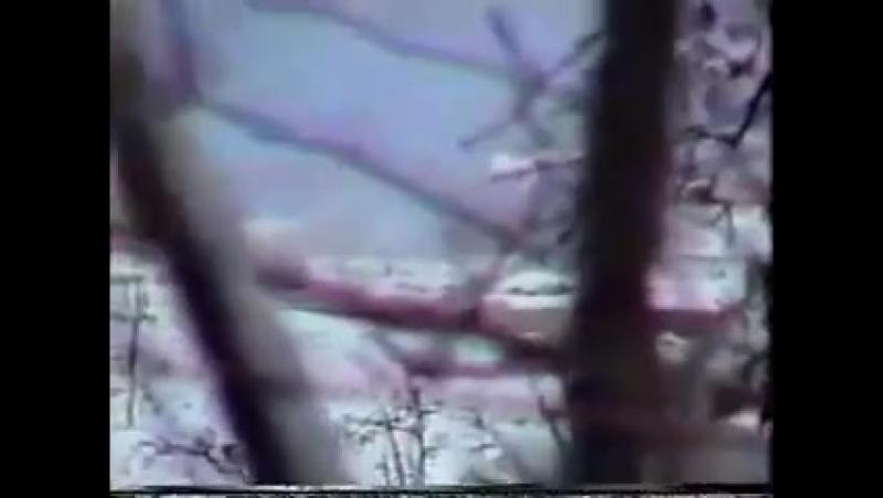 Первая чеченская война. Попытка уничтожить БТР ВС РФ