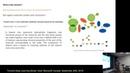 TDLS Junction Tree Variational Autoencoder for Molecular Graph Generation