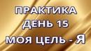 33. Вадим Зеланд - День 15. Моя цель - Я