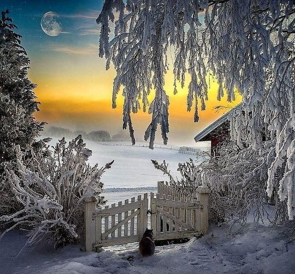 ..Пусть Зима будет Снежной...