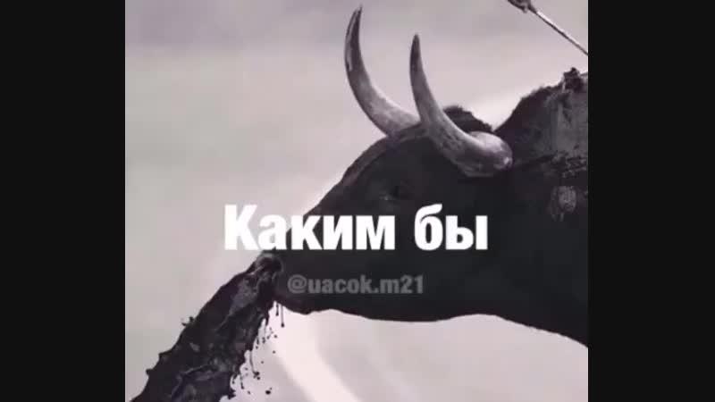 Меньше пафоса, ДРУЗЬЯ)