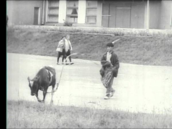 Эдуард Раненко Киножурнал Наш край 1992 Год после путча