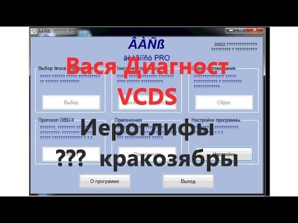 Вася Диагност VCDS Иероглифы кракозябры в программе. Что делать!