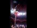 Цирк Золотой Дракон июнь 2018 г