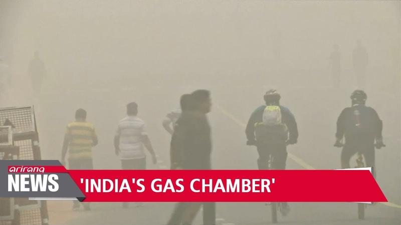 New Delhi 'a gas chamber'… schools close as pollution chokes India's capital