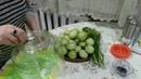 ԿԱՆԱՉ ԼՈԼԻԿԻ ԹԹՈՒ Соленые Зеленые Помидоры Stuffed Pickled Tomatoes Recipe