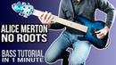 Alice Merton - No Roots BASS TUTORIAL [Play Along Tabs]