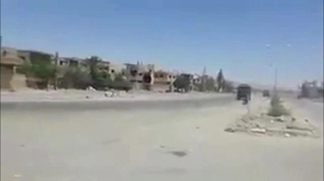 Syrian Taxi