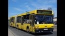 Поездка на автобусе МАЗ 105 гос № АЕ 9574 7