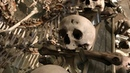 Sedlec Ossuary tour in the Czech Republic