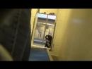 Пёс из приюта не смог сдержать эмоций когда понял что его пришли забрать а не