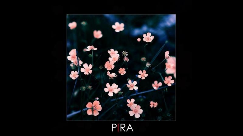 Луна Лютики PIRA Remix