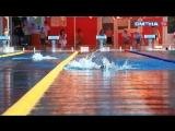 Второй день открытого турнира по плаванию «Кубок золотого кольца» в ВДЦ «Смена»