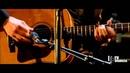Joe Bonamassa Jockey Full of Bourbon LIVE at Vienna