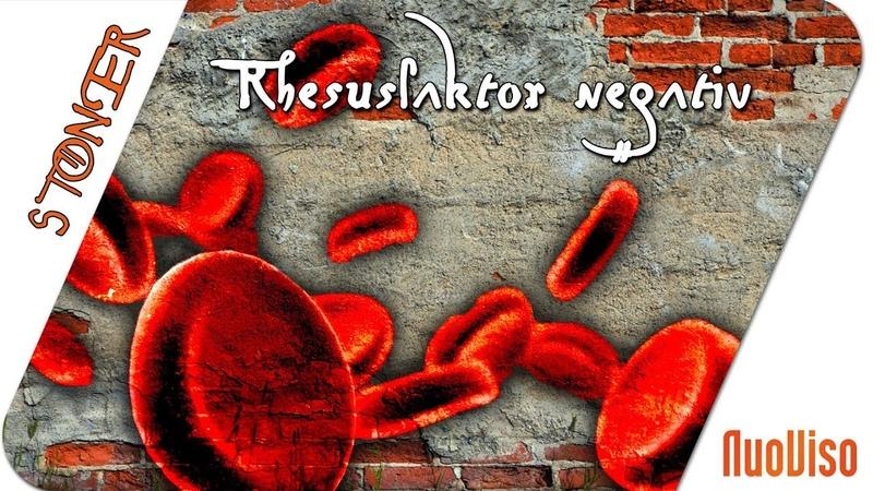 Rhesusfaktor negativ Was verrät unser Blut über uns