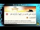 Surat Al Baqarah Ayat 5