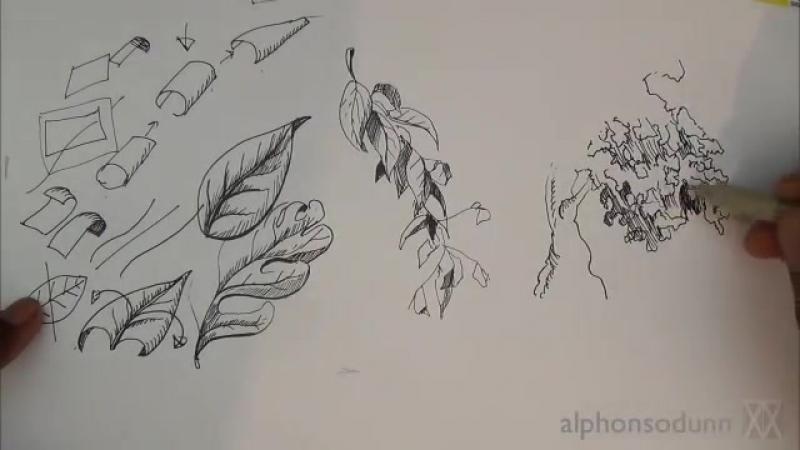 туториалы листьев рисуем листья пошагово