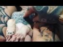 Татуированный-сфинкс.mp4