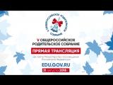 Система образования в России. Что это?