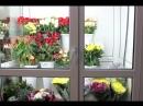 Пластиковая конструкция для магазина цветов