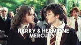Harry Hermione mercury
