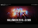 27 ОКТЯБРЯ 2018 | HALLOWEEN 2018 / DJ 909