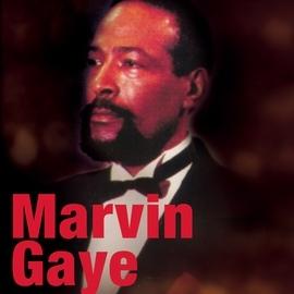 Marvin Gaye альбом Marvin Gaye