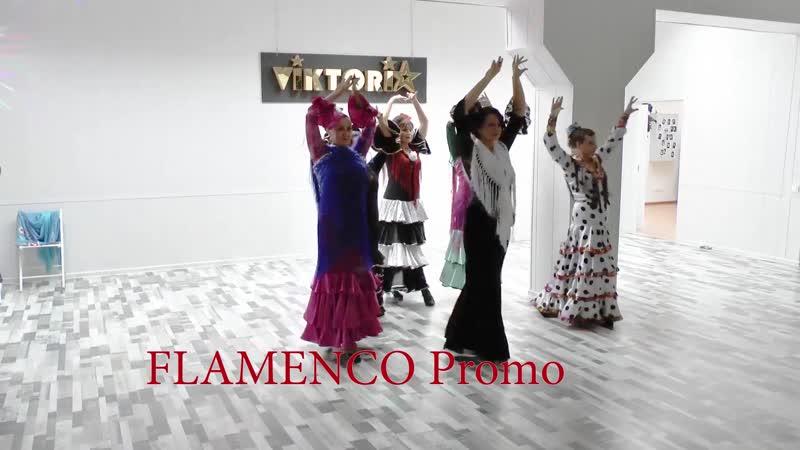 02. Flamenco Promo 2 мин 20