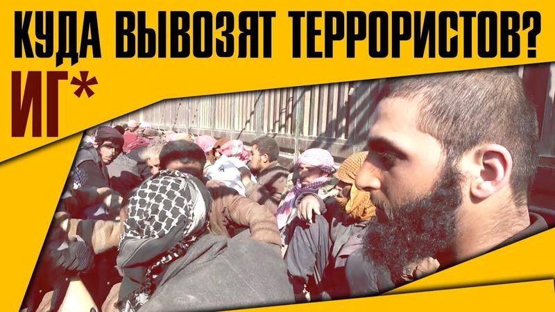 Куда курды вывозят террористов ИГ Военная обстановка в Сирии 21 февраля 2019