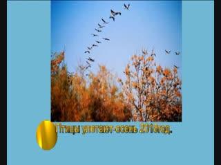 .Улетают птицы--Осень.-2018год.