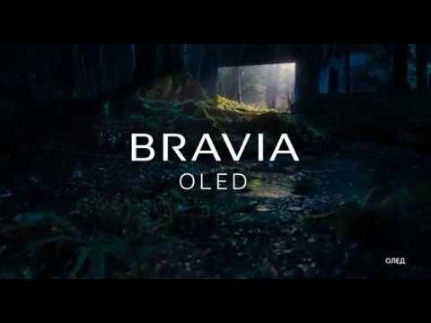 OLED-телевизоры Sony BRAVIA серии AF8