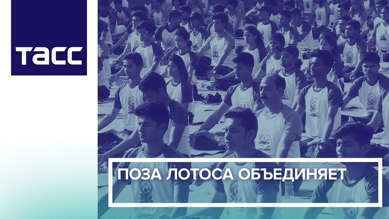 Поза Лотоса объединяет: Международный день йоги
