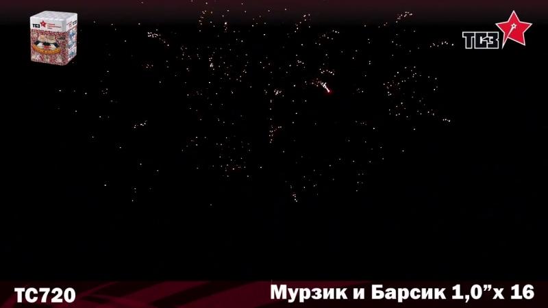ТС720 МУРЗИК И БАРСИК