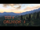 Oblivion 3: Нападения на дороге.