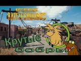 Крутые бобры PlayerUnknowns Battlegrounds