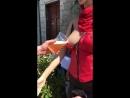 Bière à la pompe