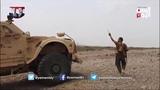 صور حية القوات الحكومية تتقدم في عدة مواقع &#