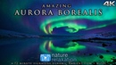 Real-Time AURORA BOREALIS in 4K: Alaska's Northern Lights 72 Minute Ambient Nature Video Music